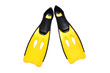 yellow fin isolated - 55350095