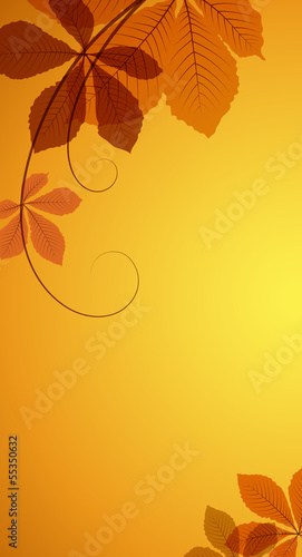 Autumn background with yellow chestnut leaves