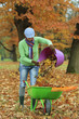 Autumn - woman raking  leaves in the garden