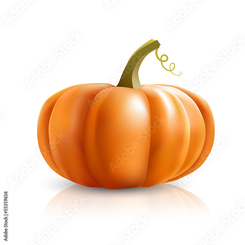 big pumpkin on white background