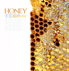 Sweet honeycomb of wild bees. Easy removable sample text