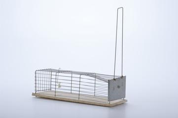 trappola per topi su fondo bianco
