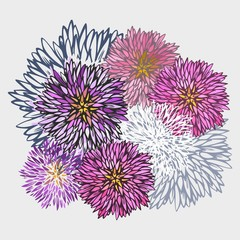 Abstract aster flower pattern