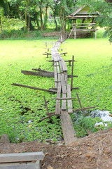 foot bridge leading to a cottage beside the lake