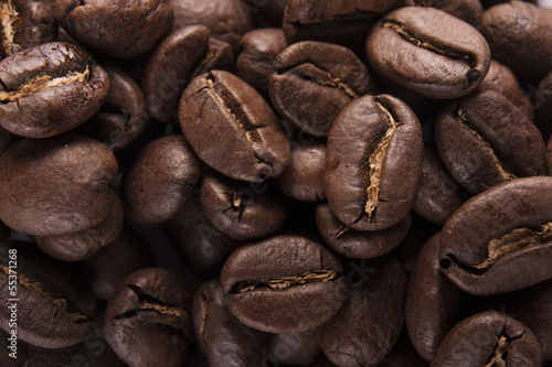 Guatemala Coffee Beans Close up