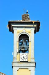 nido e cicogna sul campanile