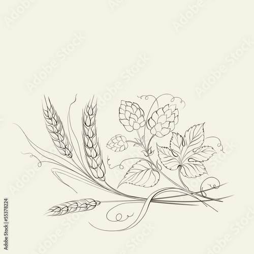 向日葵草图手绘向量.可以用作插图或材料主题标签