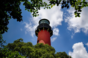 Jupiter Lighthouse Through the Trees