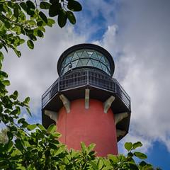 Jupiter Lighthouse Lantern Room Through the Trees