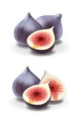 Figs illustration