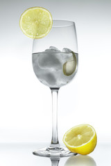 gin-tonic con fondo blanco