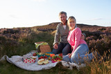 Couple Having Picnic On Countryside Walk