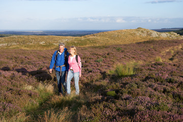 Couple Hiking Across Moorland Covered With Heather