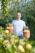guy with basket of harvested apples in garden