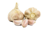 Garlic over a white background