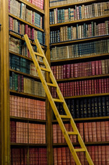 Wooden ladder in the old library
