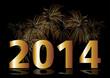 feuerwerk  2014