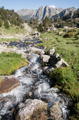 Creek at Aiguestortes and Sant Maurici National Park, Pyrenees