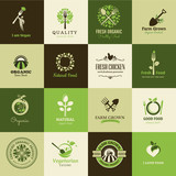 Set of icons for organic food and restaurants