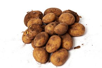 Biokartoffeln auf weiß isoliert von oben