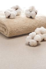 複数の綿の実とタオル