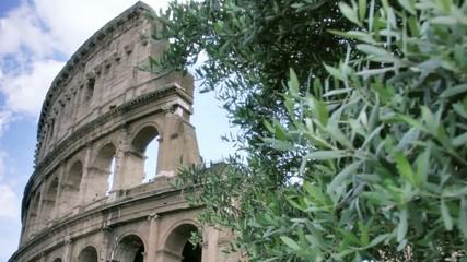 Roman Colosseum in Rome Italy