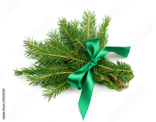 twigs of fir tree tied with a ribbon