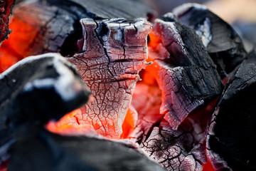 coals as a backdrop. macro