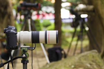 single camera len