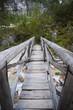 Wooden bridge path through forest, Dolomites, Italy