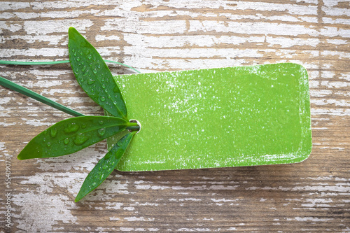 green nature label