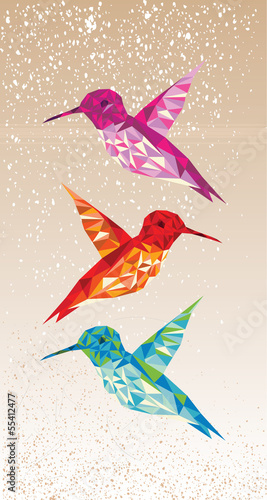 Foto op Canvas Geometrische dieren Colorful humming birds illustration.