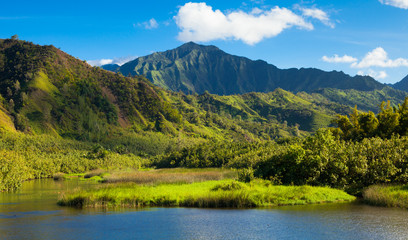 Kauai Mountains and Hanalei River