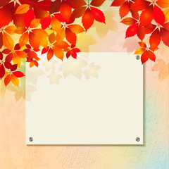 Autumn background with plastered wall, billboard