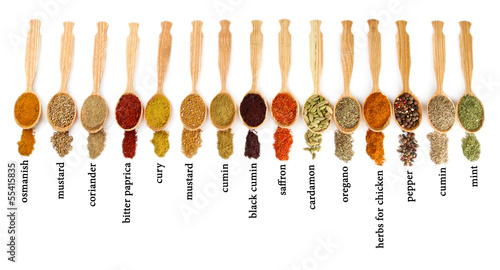 Foto op Plexiglas Kruiden 2 Many different spices with their name in wooden spoons isolated