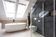 Urban apartment - shower and bath