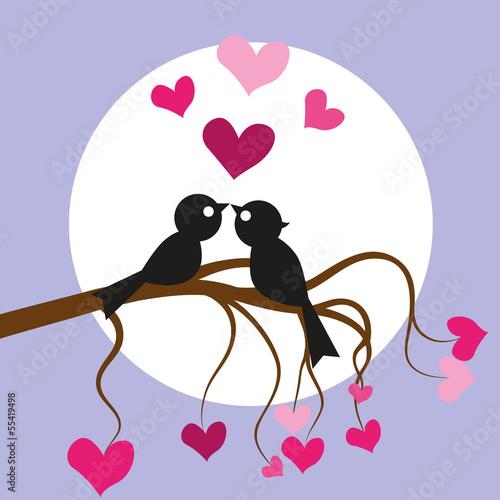 kocham-ptaki