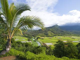 カウアイ島のハナレイ渓谷展望台