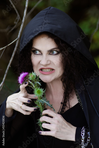 the wicked witch with prickly Thistle