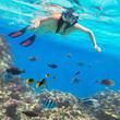 Leinwanddruck Bild - Beautiful woman snorkeling in Red Sea of Egypt