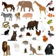 Animals 2 - 55425433