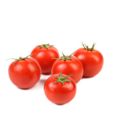 fresh tomatoes with green leaves