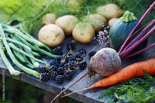 Fresh vegetables on the garden table