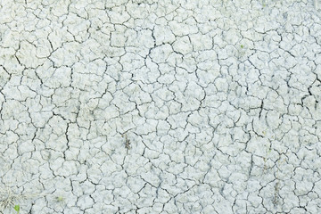 Cracked dry earth