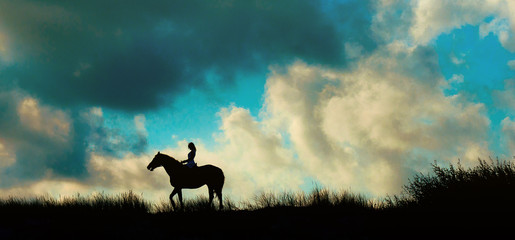 Horseback rider over blue sky on a mount