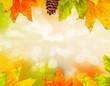 Autumn colored falling leafs