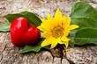 Sonnenblume mit Herz auf Holz