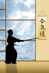 Aikido silhouette