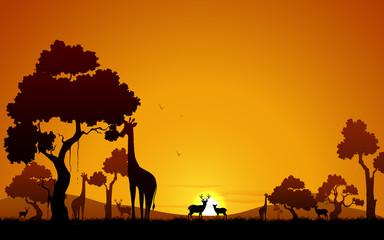 Giraffe and Deer in Jungle