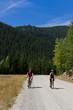 mountain biking - 55441092